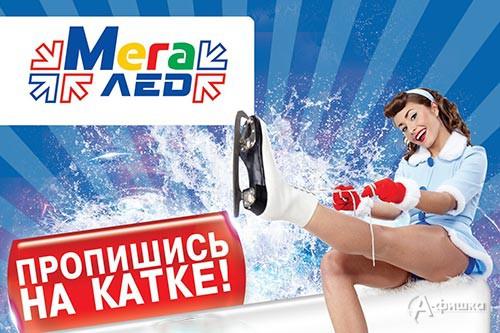 Расписание катаний на арене «МегаЛёд» в ТРЦ МегаГринн: Афиша спорта в Белгороде