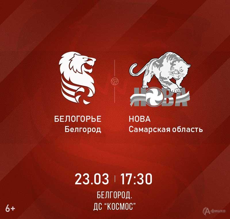 «Белогорье» (Белгород) – «Нова» (Самарская обл.): Афиша волейбола в Белгороде