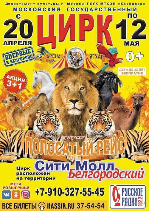 Программа «Полосатый рейс» цирка-шапито «Арена-Ягуар»: Непропусти вБелгороде
