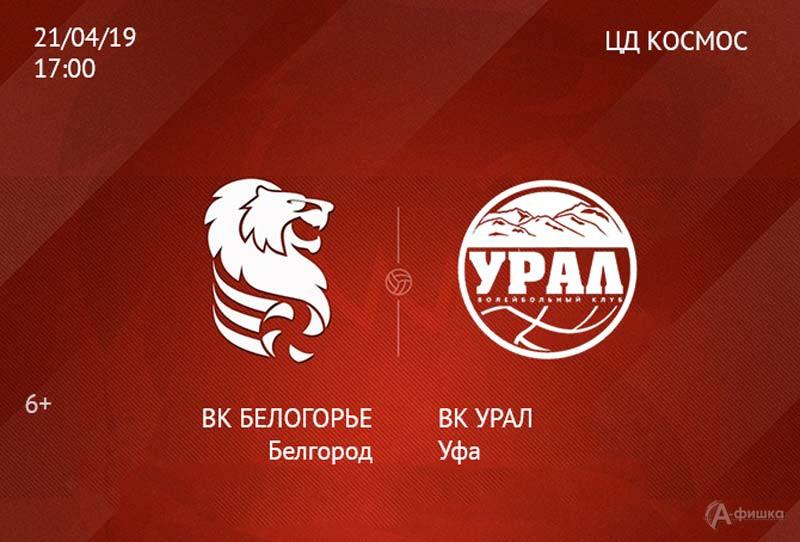 Матч «Белогорье» — «Урал» (Уфа) 21 апреля 2019 г.: Афиша волейбола в Белгороде