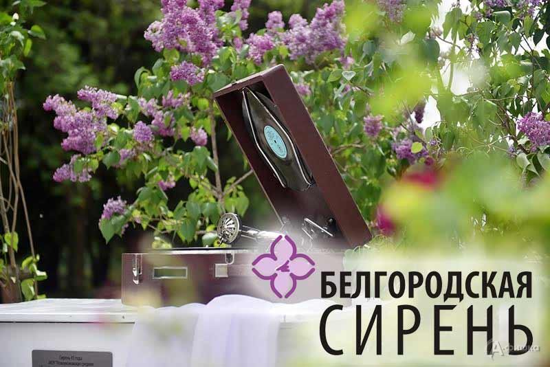 Фестиваль – конкурс художественного творчества «Белгородская сирень»: Не пропусти в Белгороде