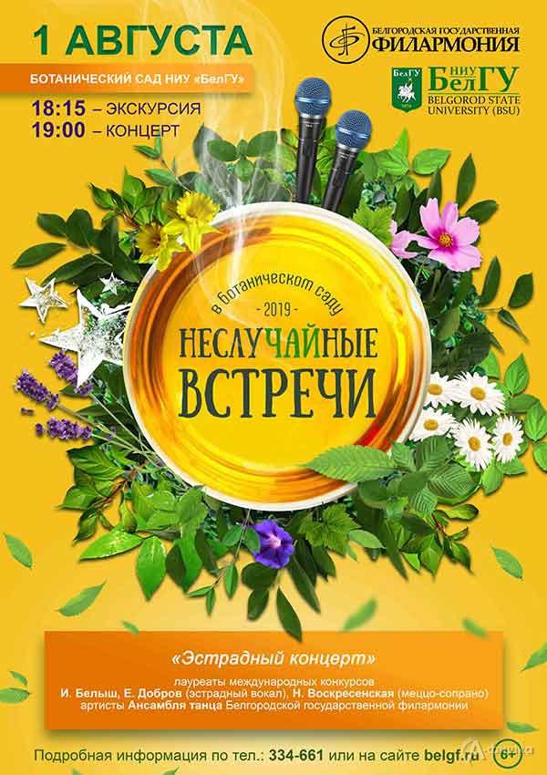 «Эстрадный концерт v.1» в проекте «НеслуЧАЙные встречи»: Афиша филармонии в Белгороде