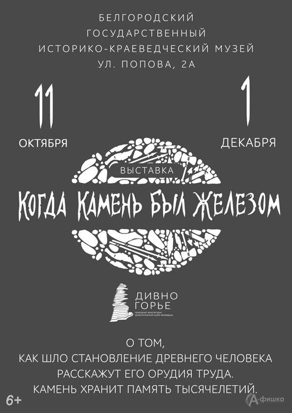 Выставка «Когда камень был железом»: Афиша выставок в Белгороде
