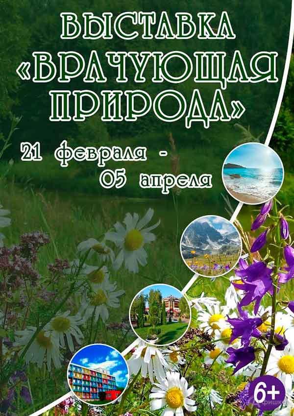Выставка «Врачующая природа»: Афиша выставок в Белгороде