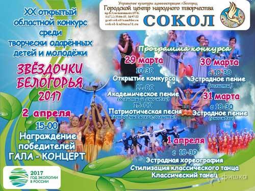 Открытый конкурс «Звёздочки Белогорья 2017»: Не пропусти в Белгороде