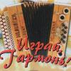 Концерты в Белгороде: «Играй гармонь»