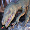 Выставки в Белгороде: Планета динозавров - 2 в УСК Светланы Хоркиной