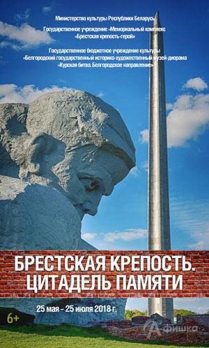 Выставка «Брестская крепость. Цитадель Памяти» в музее-диораме: Афиша музеев Белгорода
