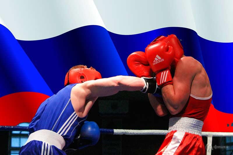 Спортивный праздник «Международный день бокса»: Афиша спорта в Белгороде