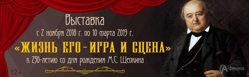 Выставка о Щепкине «Жизнь его — игра и сцена» в Краеведческом музее: Афиша выставок в Белгороде