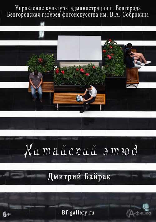 Фотовыставка Дмитрия Байрака «Китайский этюд»: Афиша выставок в Белгороде