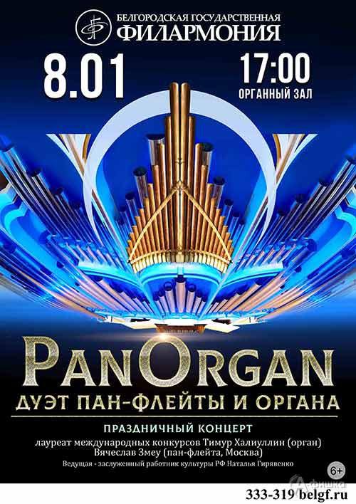 Рождественский вечер «Пан Орган: Дуэт пан-флейты и органа»: Афиша филармонии в Белгороде