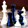 Спорт в Белгороде: Чемпионат г. Белгорода по шахматам