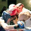 Спорт в Белгороде: VI международный турнир по боксу памяти ЗТР В.Д. Иванова