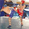 Спорт в Белгороде: Международный турнир по кикбоксингу в рамках фестиваля боевых искусств.