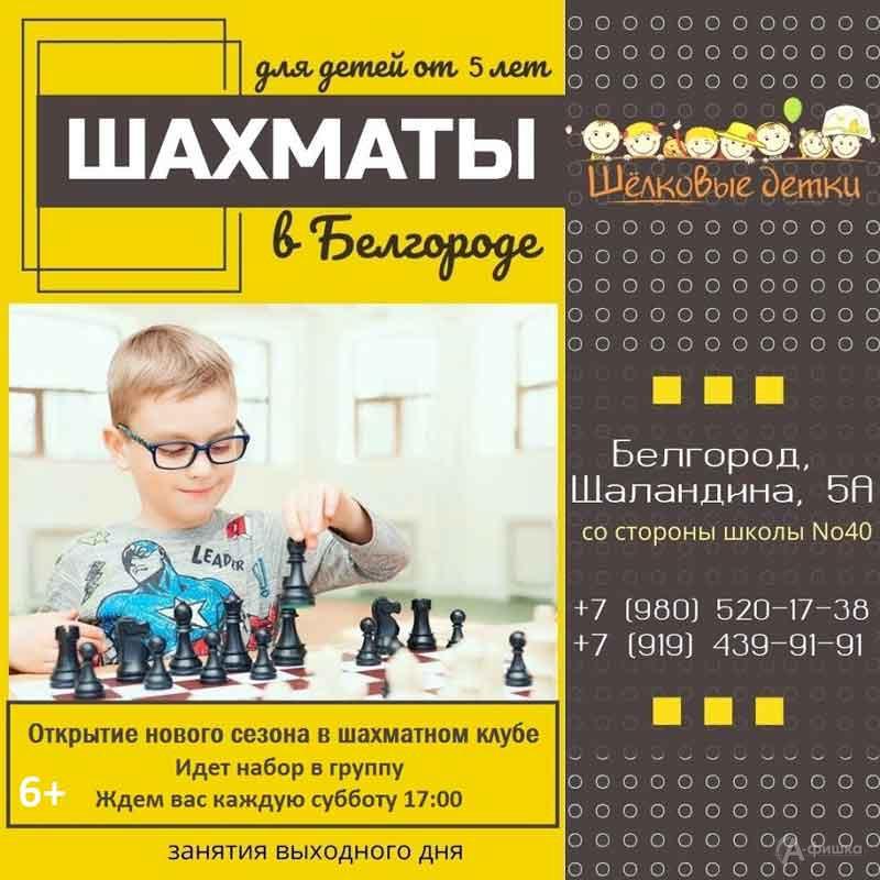 Игровое занятие «Играем в шахматы» в клубе «Шелковые детки»: Детская афиша Белгорода