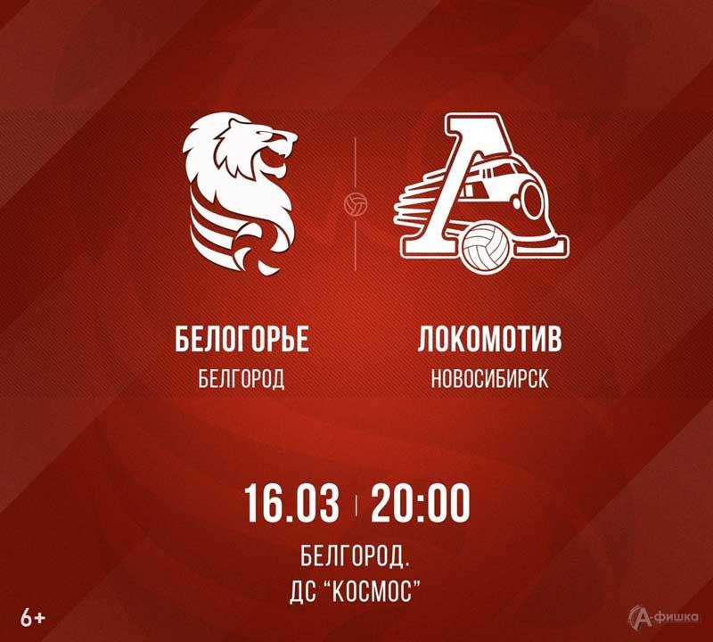 «Белогорье» (Белгород) – «Локомотив» (Новосибирск): Афиша волейбола в Белгороде