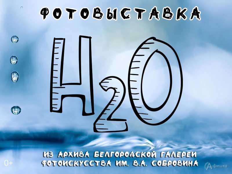 Выставка фотографий «Н2О» в Фотогалерее Собровина: Афиша выставок в Белгороде