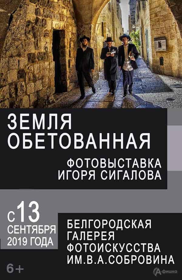 Фотовыставка Игоря Сигалова «Земля обетованная»: Афиша выставок в Белгороде
