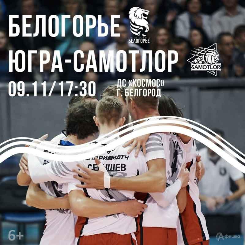 «Белогорье» (Белгород) – «Югра-Самотлор» (Нижневартовск) 9 ноября: Афиша волейбола в Белгороде