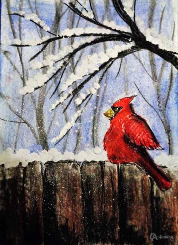 Занятие «Красный кардинал» визостудии клуба «Шёлковые детки»: Детская афиша Белгорода