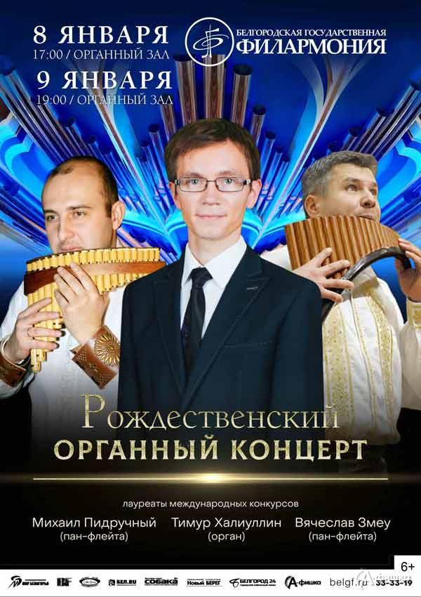 Рождественский органный концерт: Афиша филармонии в Белгороде