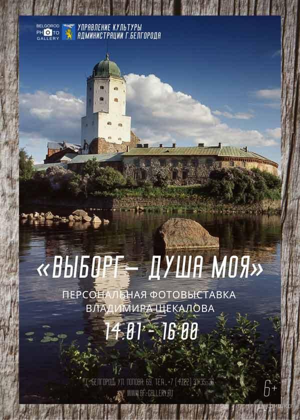 Персональная выставка Владимира Щекалова «Выборг— душа моя»: Афиша выставок вБелгороде