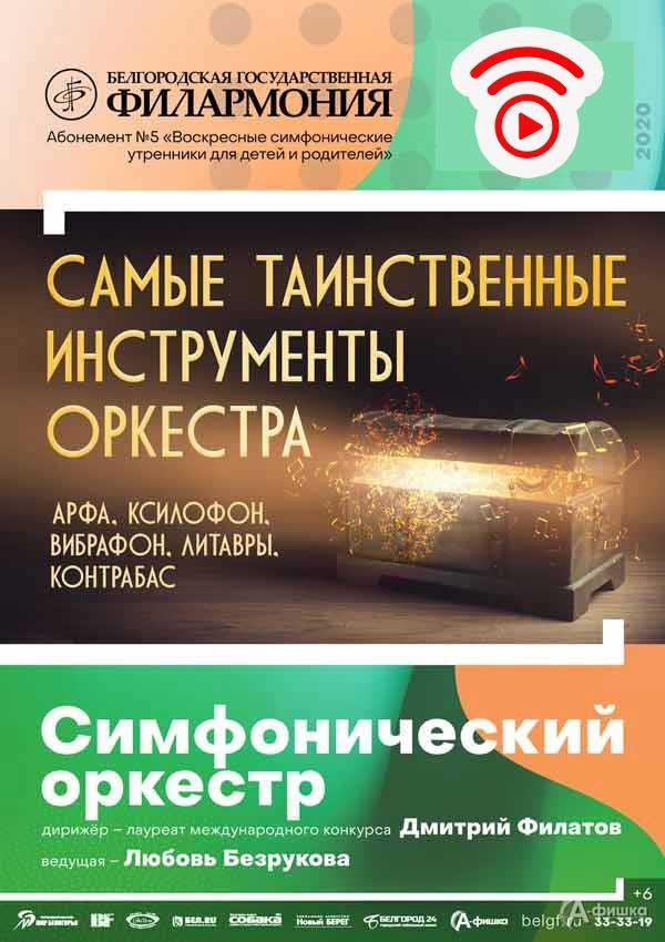 Концерт «Самые таинственные инструменты оркестра»: Афиша филармонии в Белгороде