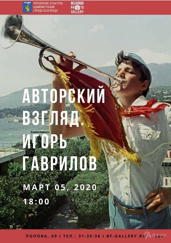 Выставка «Авторский взгляд Игоря Гаврилова»: Афиша выставок вБелгороде