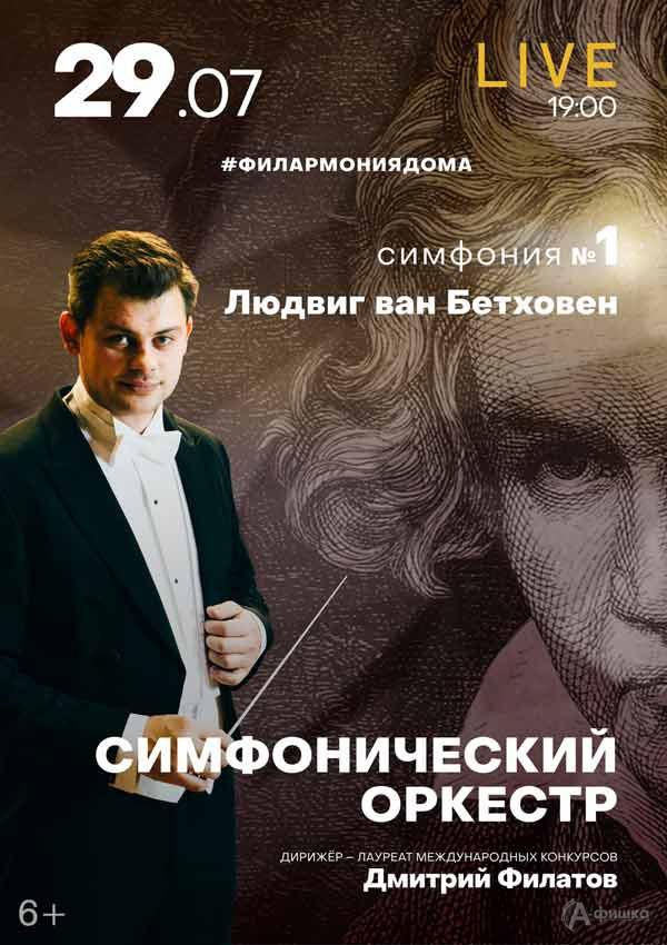 I концерт изцикла «Бетховен. Симфонии»: Афиша филармонии вБелгороде