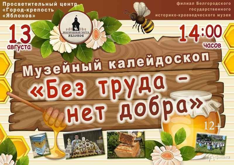 Музейный калейдоскоп «Без труда— нет добра»: Непропусти вБелгороде