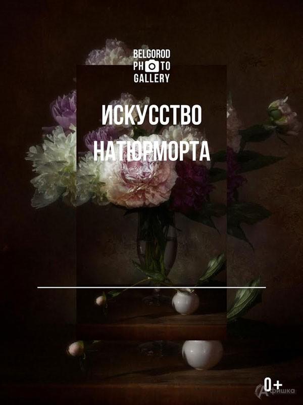Фотовыставка «Искусство натюрморта»: Афиша выставок в Белгороде