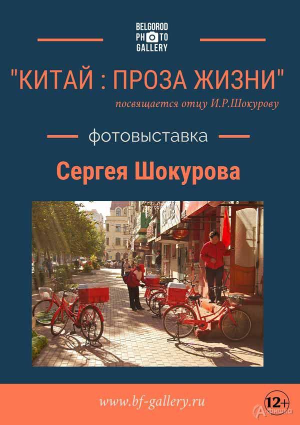 Фотовыставка Сергея Шокурова «Китай: проза жизни»: Афиша выставок в Белгороде