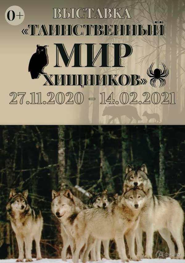 Выставка «Таинственный мир хищников»: Афиша выставок в Белгороде