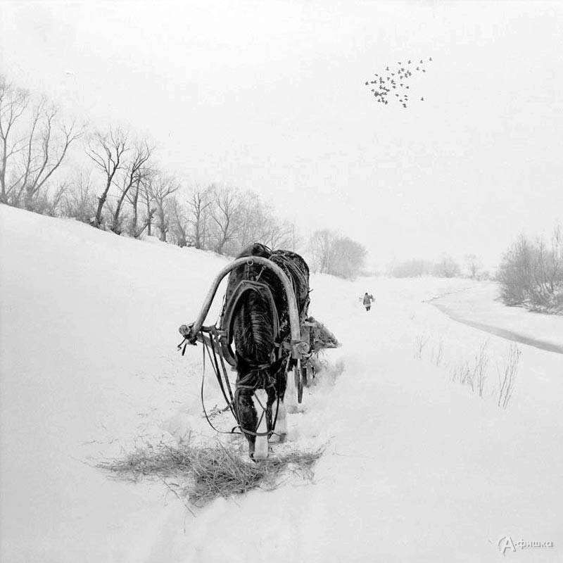 Фотовыставка «В. Собровин. Ностальгия»: Афиша выставок в Белгороде