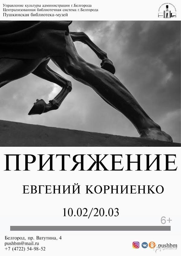 Фотовыставка Евгения Корниенко «Притяжение»: Афиша выставок в Белгороде