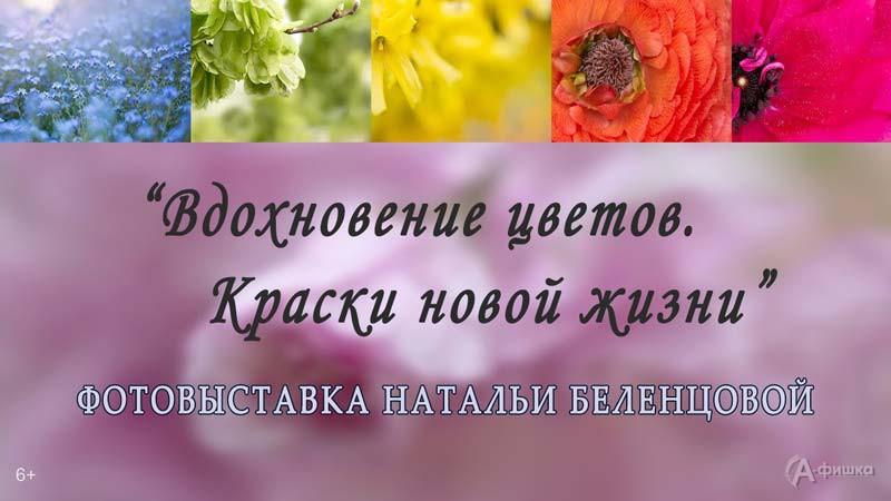 Фотовыставка Натальи Беленцовой «Вдохновение цветов. Краски новой жизни»: Афиша выставок в Белгороде