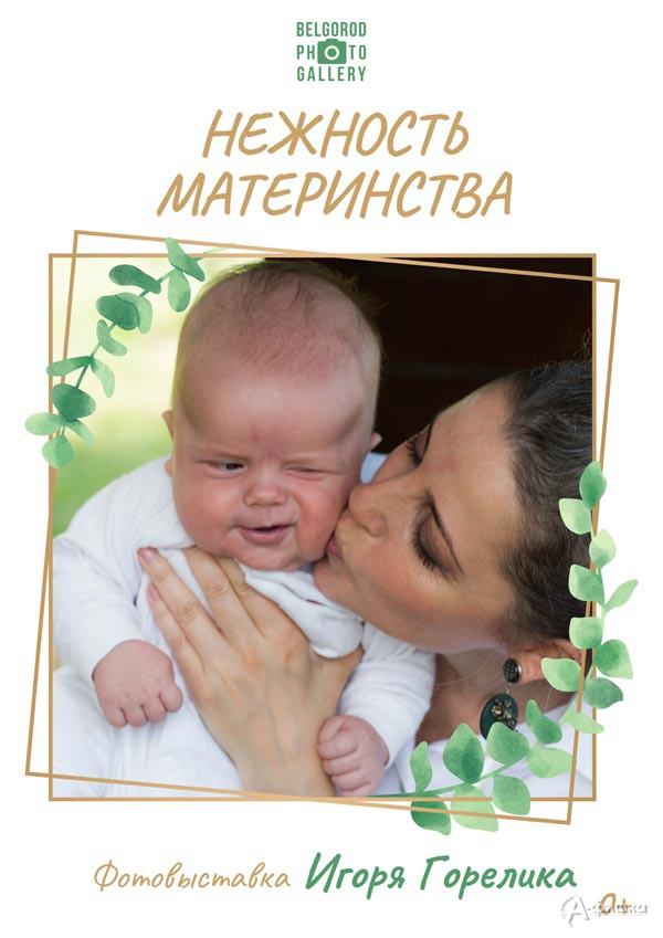 Фотовыставка Игоря Горелика «Нежность материнства»: Афиша выставок вБелгороде