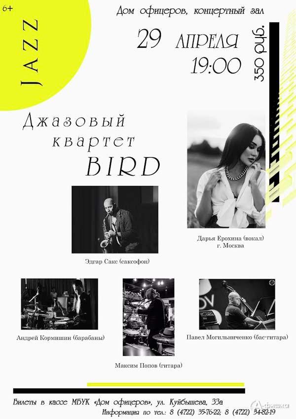 Концерт джазового квартета «BIRD»: Непропусти вБелгороде