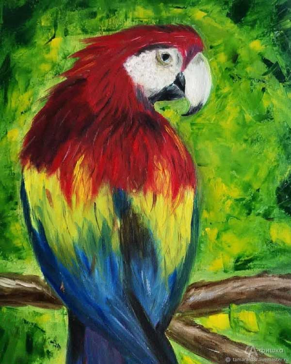 Мастер-класс «Попугай»: Детская афиша Белгорода