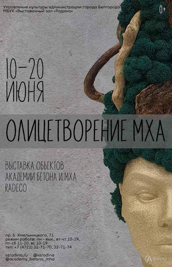 Выставка скульптурных композиций «Олицетворение мха»: Афиша выставок в Белгороде