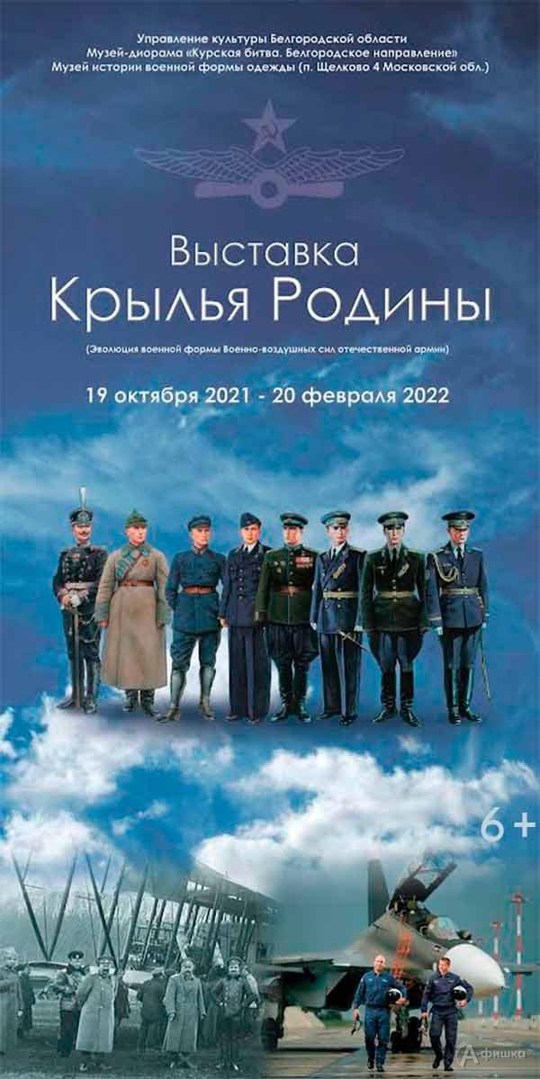 Выставка «Крылья Родины»: Афиша выставок в Белгороде